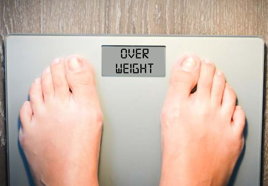 Obesity & Weight Management